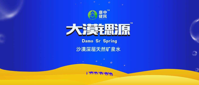 大漠锶源-logo